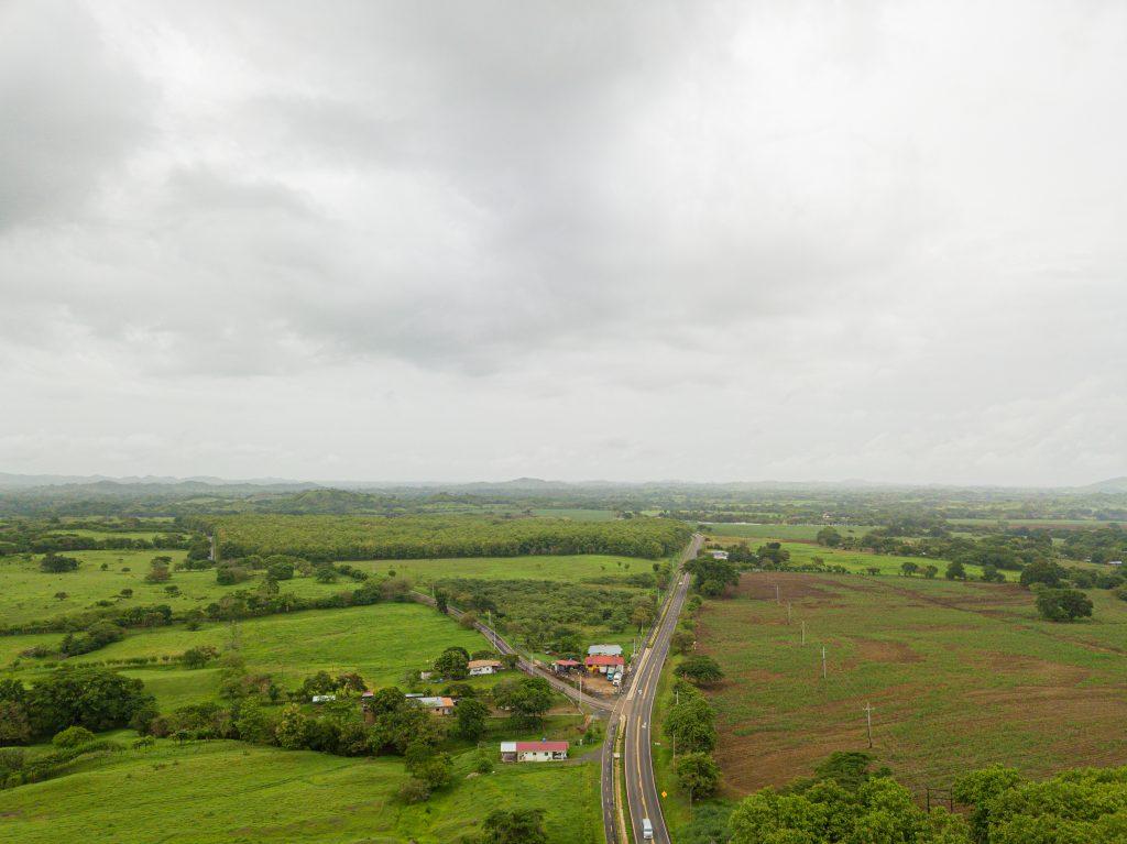 Varela Hermanos celebró las 8 hectáreas reforestadas en Pesé