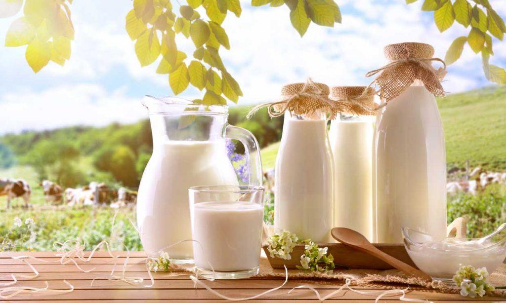 Día Mundial de la leche: el sector lácteo desempeña un papel clave al desarrollo sostenible, con sus aportes a la salud y economía
