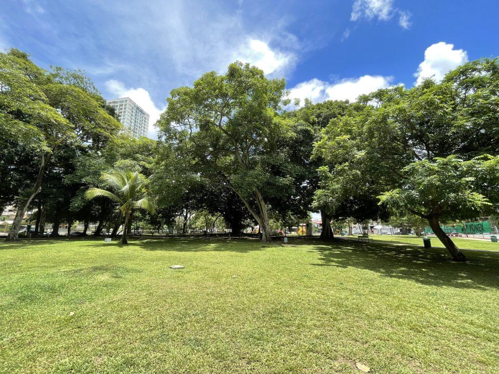 Más Parques, Mejor Calidad de Aire